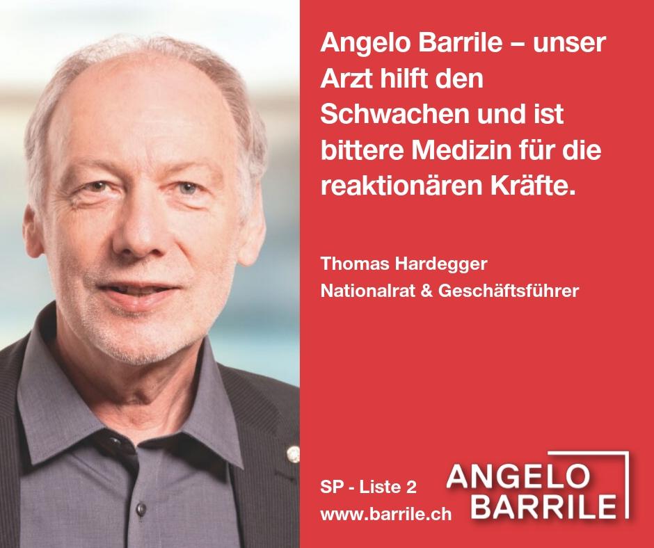 Thomas Hardegger, Geschäftsführer und Nationalrat