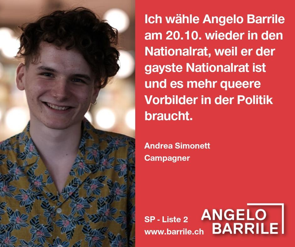 Andrea Simonett, Campagner