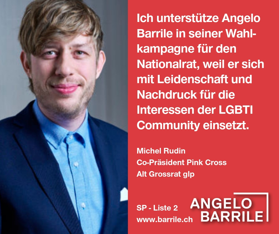 Michel Rudin, Co-Präsident Pink Cross, alt Grossrat glp