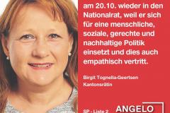 Birgit Tognella-Geertsen, Kantonsrätin