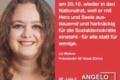 Liv Mahrer, Präsidentin SP Stadt Zürich